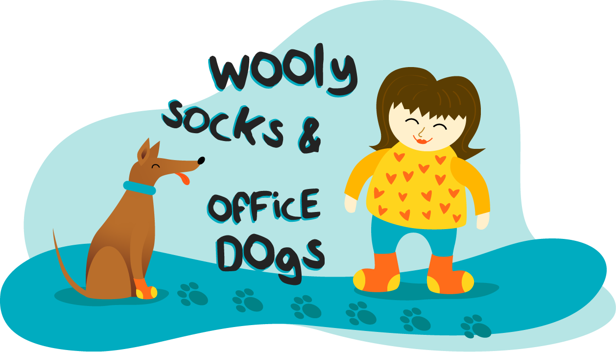 wooly socks and office dogs