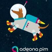 Adeona PIM kokemuksia dog